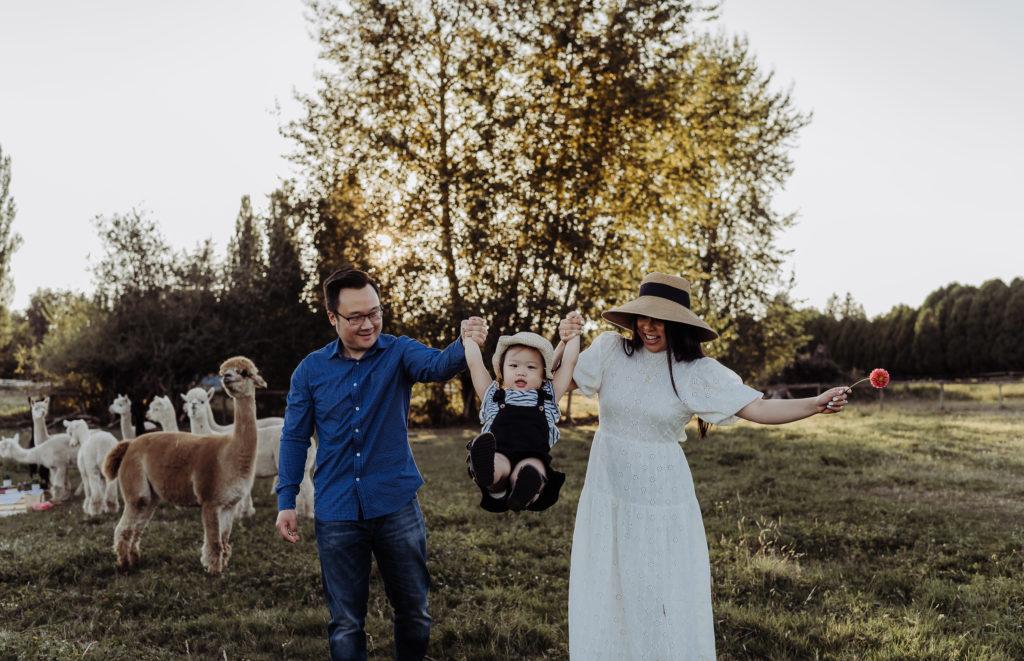 family moment + swinging at alpacas farm