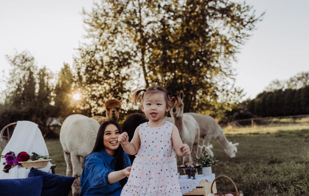 alpacas with child picnic shoot