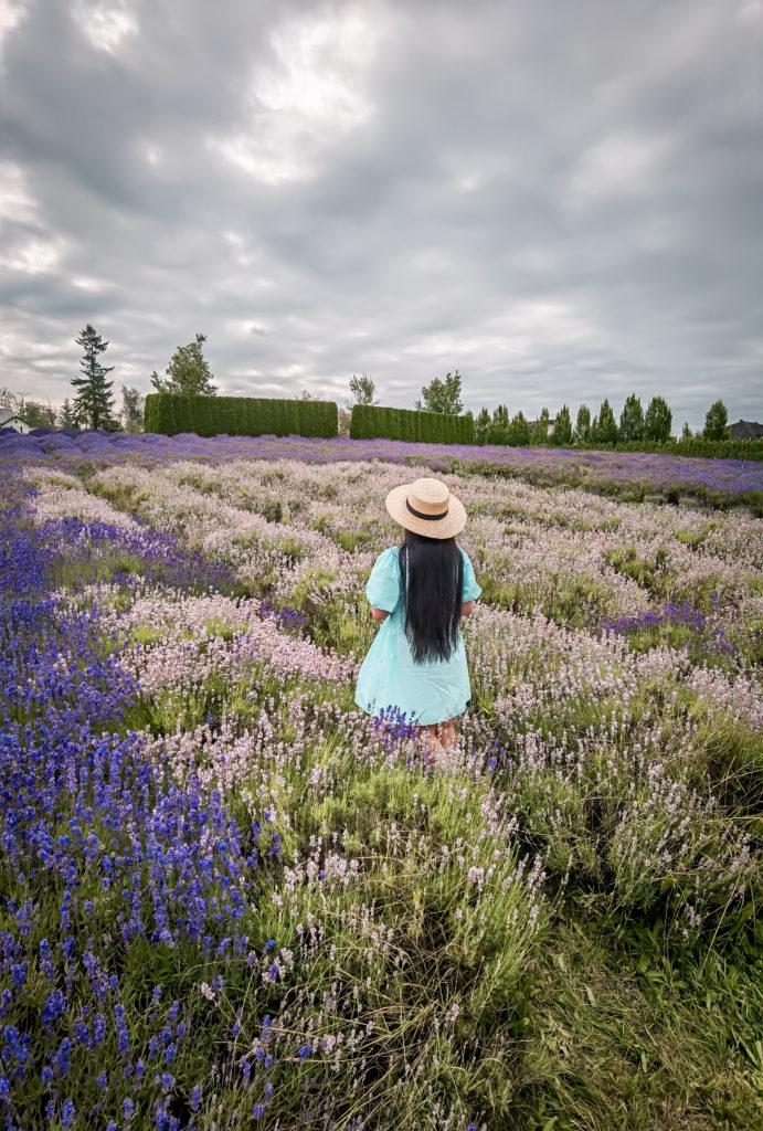 Glamouraspirit at Full Bloom Lavender Farm photo taken with Huawei P40 Pro