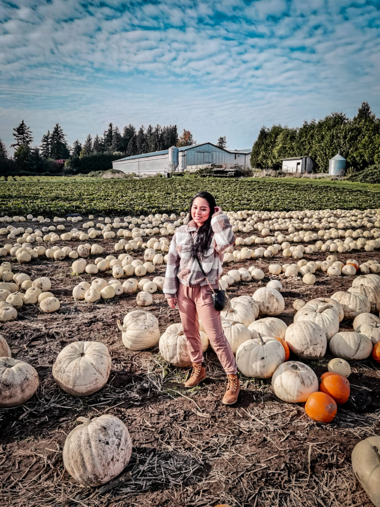 photos taken with Huawei P40 Pro ultra wide angle and night mode at Maan Farm pumpkins